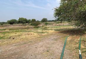 Foto de terreno comercial en venta en canal alto coria kilometro 97.5 , pueblo nuevo, león, guanajuato, 7631708 No. 01