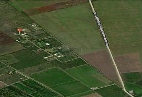 Foto de terreno habitacional en venta en cañas , montemorelos centro, montemorelos, nuevo león, 0 No. 01