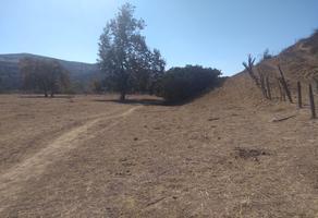 Foto de terreno comercial en venta en cañon rosarito , rosarito, playas de rosarito, baja california, 6070877 No. 01