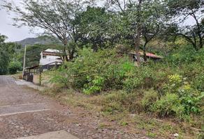 Foto de terreno habitacional en venta en caoba #53 53, santa maría del oro, santa maría del oro, nayarit, 15344290 No. 01