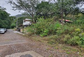 Foto de terreno habitacional en venta en caoba 53, la laguna, santa maría del oro, nayarit, 0 No. 01
