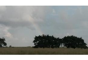 Foto de rancho en venta en  , del carmen, balancán, tabasco, 4612278 No. 01