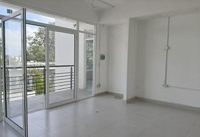 Foto de local en renta en carlos castillo peraza , supermanzana 524, benito juárez, quintana roo, 14948360 No. 01