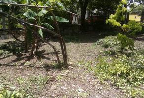 Foto de terreno habitacional en venta en carlos salinas de gortari , 12 de julio, ciudad valles, san luis potosí, 0 No. 01