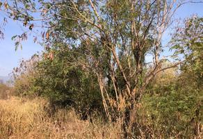 Foto de terreno habitacional en venta en carlos salinas de gortari , apodaca centro, apodaca, nuevo león, 4628092 No. 01
