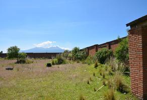 Foto de terreno habitacional en venta en carretas y alazanes , san felipe tlalmimilolpan, toluca, méxico, 17101797 No. 01
