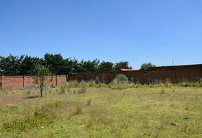 Foto de terreno habitacional en venta en carretas y alazanes , san felipe tlalmimilolpan, toluca, méxico, 0 No. 01