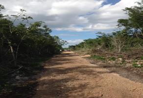 Foto de terreno habitacional en venta en carretera 0 , cancún centro, benito juárez, quintana roo, 0 No. 01