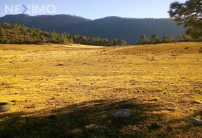 Foto de terreno industrial en venta en carretera 112 , san antonio de las alazanas, arteaga, coahuila de zaragoza, 6811658 No. 01