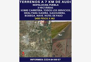 Foto de terreno comercial en venta en carretera 125, nopalucan de la granja, nopalucan, puebla, 9871615 No. 01