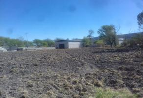 Foto de casa en renta en carretera 200 , fuentezuelas, tequisquiapan, querétaro, 0 No. 01