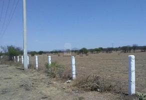 Foto de terreno comercial en venta en carretera 57 slp - mexico , el fuerte, santa maría del río, san luis potosí, 5712355 No. 01