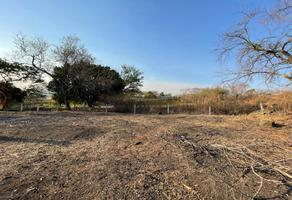 Foto de terreno habitacional en venta en carretera a aeropuerto de cuernavaca 100, lomas del manantial, xochitepec, morelos, 0 No. 01