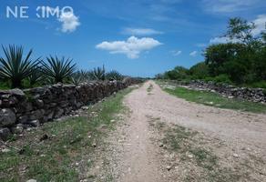 Foto de terreno habitacional en venta en carretera a chixchulub , chicxulub, chicxulub pueblo, yucatán, 0 No. 01