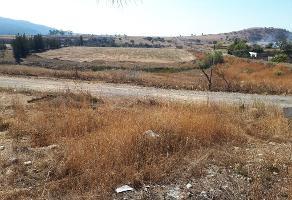 Foto de terreno habitacional en venta en carretera a colotlan kilometro 13 , colotlan centro, colotl?n, jalisco, 5684896 No. 02