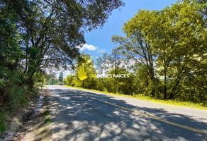 Foto de terreno comercial en venta en carretera a dolores hidalgo 1, guanajuato centro, guanajuato, guanajuato, 0 No. 01