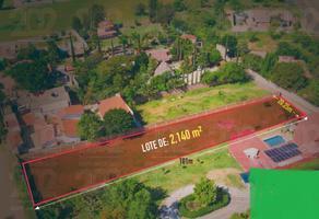 Foto de terreno habitacional en venta en carretera a guelatao , san antonio, tlalixtac de cabrera, oaxaca, 16208105 No. 01