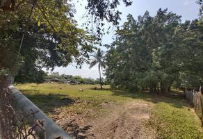 Foto de terreno comercial en venta en carretera a jiquilpan 0, el alpuyeque, colima, colima, 13655892 No. 01
