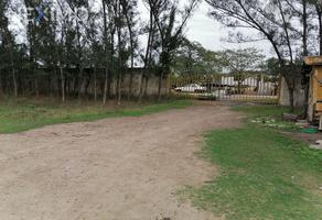 Foto de terreno industrial en venta en carretera a la anahuac 80, ciudad cuauhtémoc, pueblo viejo, veracruz de ignacio de la llave, 18994737 No. 01