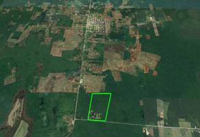 Foto de terreno habitacional en venta en carretera a mahahual, quintana roo , bacalar, bacalar, quintana roo, 0 No. 01