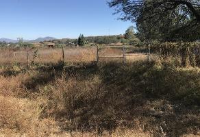 Foto de terreno industrial en venta en carretera a san juan , ixtlahuacan de los membrillos, ixtlahuacán de los membrillos, jalisco, 4372771 No. 01
