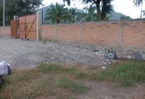 Foto de terreno habitacional en venta en carretera a san sebastian , san sebastián el grande, tlajomulco de zúñiga, jalisco, 0 No. 01
