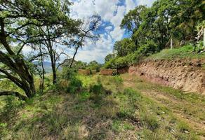 Foto de terreno habitacional en venta en carretera a santiago mexquititlán , lomas de san higinio, amealco de bonfil, querétaro, 0 No. 01