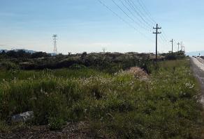 Foto de terreno habitacional en venta en carretera a tala , camino real, tala, jalisco, 5243899 No. 02