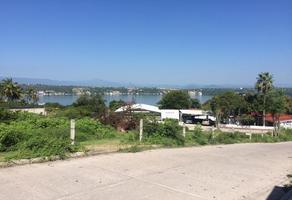 Foto de terreno habitacional en venta en carretera a tehuixtla , tequesquitengo, jojutla, morelos, 0 No. 01