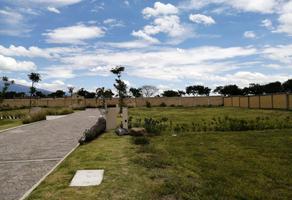 Foto de terreno habitacional en venta en carretera a tenextepec , tenextepec, atlixco, puebla, 0 No. 01