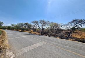 Foto de terreno comercial en venta en carretera a toyota -, anexo a la ecólogia, querétaro, querétaro, 0 No. 01
