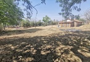 Foto de terreno habitacional en venta en carretera a umecuaro , santiago undameo, morelia, michoacán de ocampo, 0 No. 01