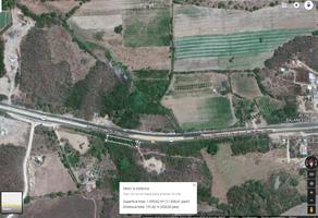 Foto de terreno comercial en venta en carretera acapulco salina cruz , puente escondido, santa maría tonameca, oaxaca, 6117104 No. 01
