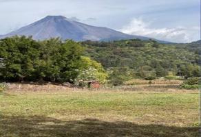 Foto de terreno habitacional en venta en carretera al naranjal , el naranjal, villa de álvarez, colima, 0 No. 01