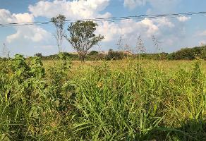 Foto de terreno habitacional en venta en carretera al salto s/n , el sabino, el salto, jalisco, 11931910 No. 01