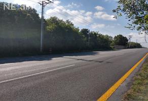 Foto de terreno industrial en venta en carretera allende- santiago , lazarillos de arriba, allende, nuevo león, 7672738 No. 01