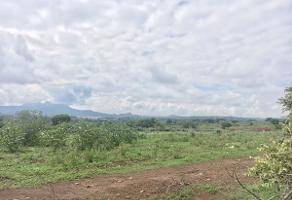Foto de terreno habitacional en venta en carretera amatitán , amatitan, amatitán, jalisco, 5433546 No. 01