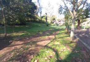 Foto de terreno habitacional en venta en carretera antigua a coatepec sin numero, briones, coatepec, veracruz de ignacio de la llave, 0 No. 01