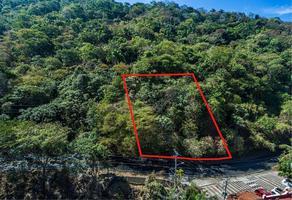 Foto de terreno habitacional en venta en carretera barra de navidad , altavista, puerto vallarta, jalisco, 17854376 No. 01
