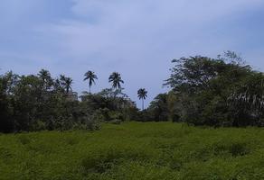 Foto de terreno habitacional en venta en carretera barra vieja , los arcos, acapulco de juárez, guerrero, 0 No. 01
