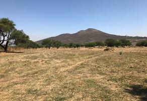 Foto de terreno comercial en venta en carretera bella vista , lomas de san agustin, tlajomulco de zúñiga, jalisco, 0 No. 01