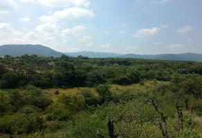 Foto de terreno habitacional en venta en carretera bernal sierra gorda , tolimán, tolimán, querétaro, 10622181 No. 01