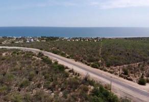 Foto de terreno habitacional en venta en carretera buena vista-santiago , buenavista, los cabos, baja california sur, 0 No. 01