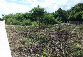Foto de terreno industrial en venta en carretera cancún-tulum , el tigrillo, solidaridad, quintana roo, 6596410 No. 01