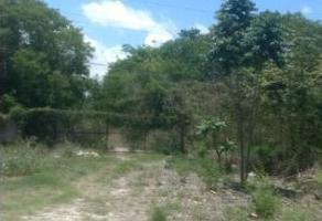 Foto de terreno industrial en venta en carretera cancún-tulum , playa del carmen, solidaridad, quintana roo, 6613297 No. 01