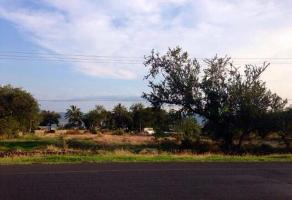 Foto de terreno comercial en venta en carretera chapala - jocotepec , el panteón, jocotepec, jalisco, 8579624 No. 01