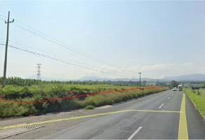 Foto de terreno habitacional en venta en carretera chapala-guadalajara , balcones de la calera, ixtlahuacán de los membrillos, jalisco, 0 No. 02