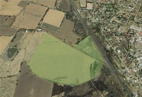 Foto de terreno habitacional en venta en carretera chapala-guadalajara , buenavista, ixtlahuacán de los membrillos, jalisco, 0 No. 01
