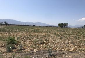 Foto de terreno habitacional en venta en carretera chapala-la capilla kilometro 5, los cedros, ixtlahuacán de los membrillos, jalisco, 0 No. 01