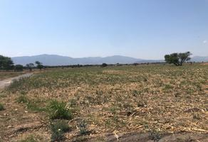 Foto de terreno habitacional en venta en carretera chapala-la capilla , los cedros, ixtlahuacán de los membrillos, jalisco, 14163725 No. 01